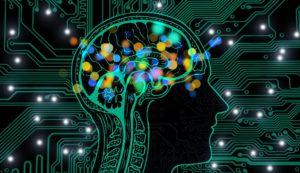 sesgos cognitivos, qué son